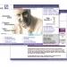 Deutschebank-Site web